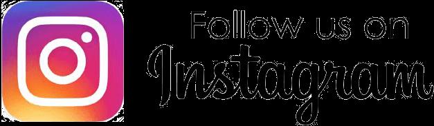 Instagram Follow Button